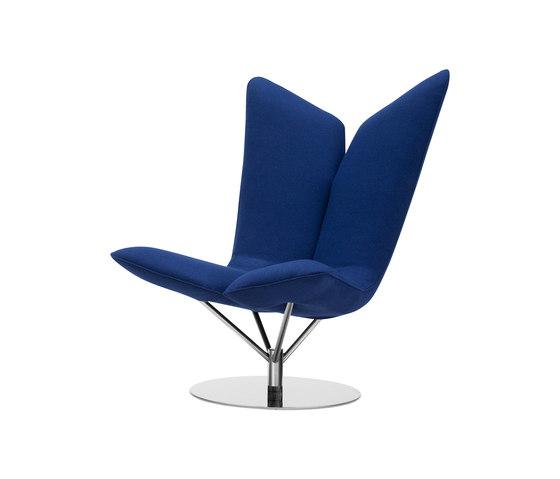 ANGLE Sessel, Bild Softline