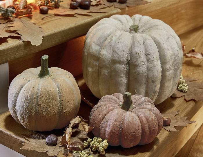 Kürbis als Herbstdekoration